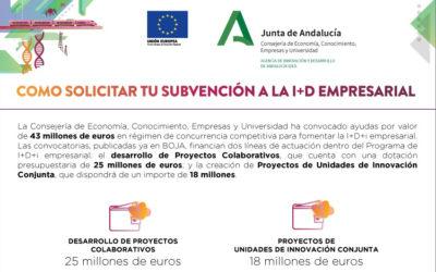La Agencia IDEA abre el plazo para que las empresas andaluzas puedan solicitar ayudas a Proyectos Colaborativos y Unidades de Innovación Conjunta